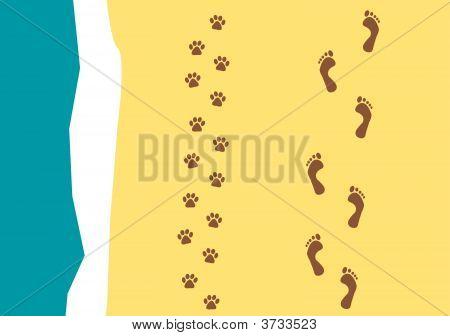 Walking The Dog Pattern