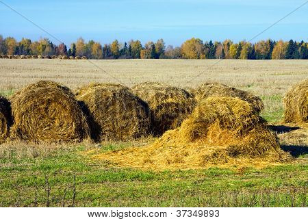 Hayrick In A Field