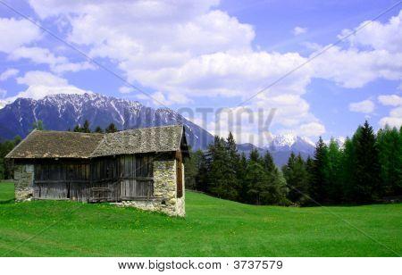 Alpine Meadow Above Imst In Austriaur