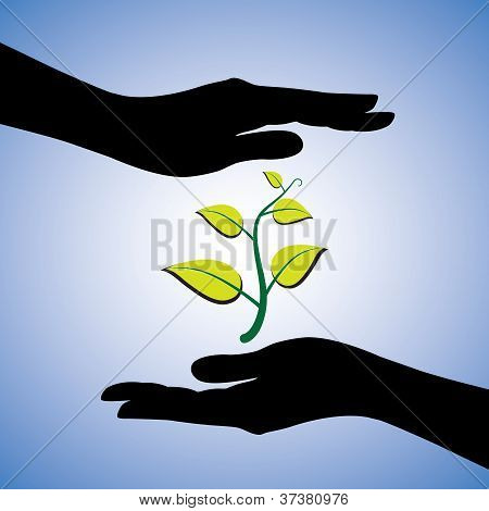 Concept Illustration Of Saving The Nature. This Graphic Uses Female Hand Silhouettes And A Plant To