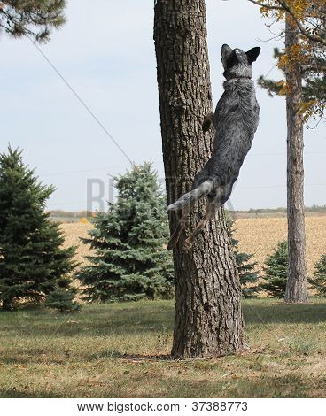 Dog jumping by a tree