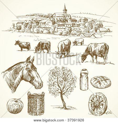 granja - colección dibujados a mano
