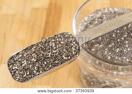 Spoon Of Chia Seeds