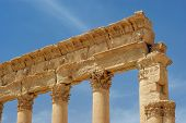 stock photo of zenobia  - ancient columns Palmyra Syria archeology architecture ruins monuments - JPG