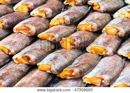 Drying snakeskin gourami fishes