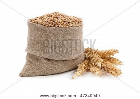 Wheat Ears In The Bag And Isolated On White