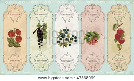 Set of vintage labels with berries:  strawberry, black-currant, huckleberry, cow-berry, raspberry