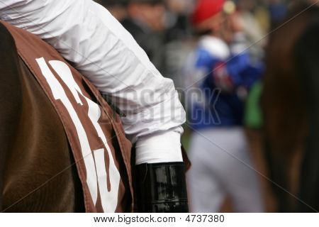 Jockey In Walking Ring