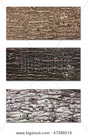 Tree Bark Banners Set