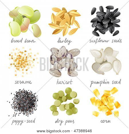 Great highly detailed set of grains, seeds and beans