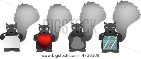 Grey Squirrel Set