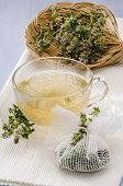 stock photo of naturopathy  - Thyme Herbal Tea in a glass cup - JPG