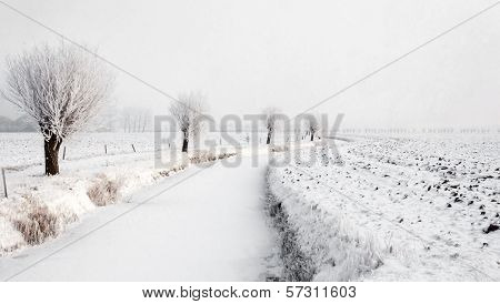 Winding Iced Ditch In A Wintry Polder Landscape
