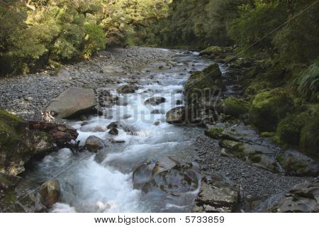 Creek Flows Over Rocks In Forest