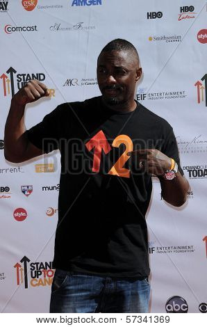 Idris Elba at the 2010 Stand Up To Cancer, Sony Studios, Culver City, CA. 09-10-10