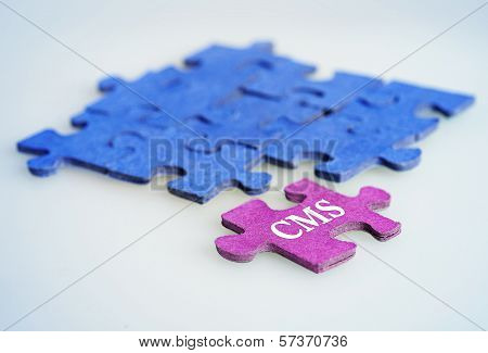 Puzzle Word Cms