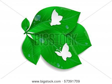Paper Butterflies And Green Leaves
