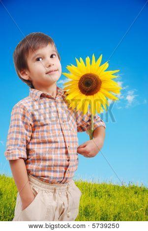 Very Cute Boy Hugging Sunflower As Friend