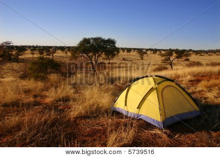 Yellow tent in the wilderness
