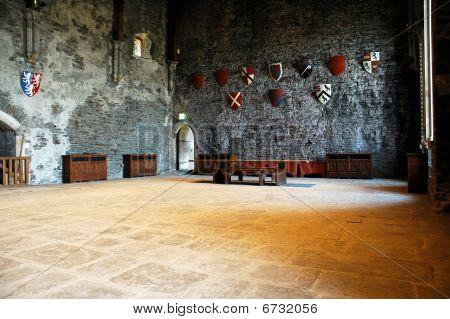 Caerphily Castle