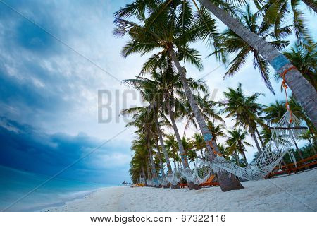 Tropical sandy beach with hammocks hanging on palm trees