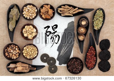 Chinese herbal medicine selection with acupuncture needles, yang symbol and good fortune coins. Script translation reads as yang.