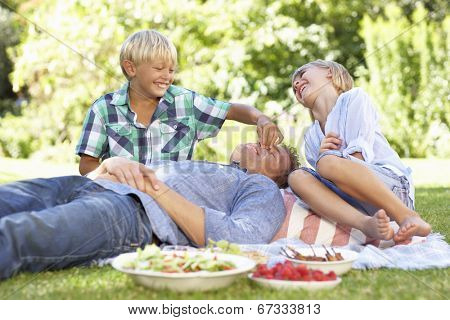 children tormenting father on picnic