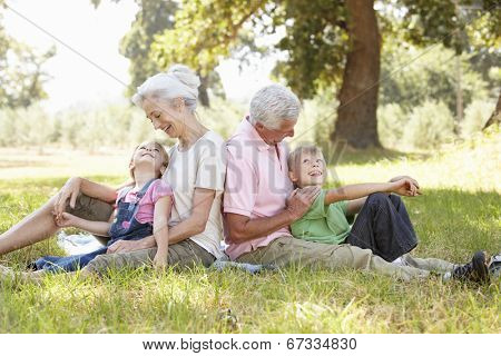 Grandparents with grandchildren in the country