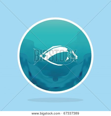 Vector Set Of Different Fish Labels Isolated