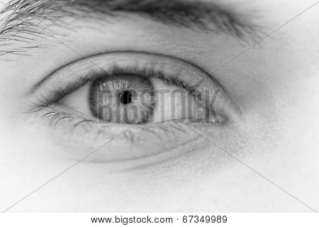 Young Man's Eyes