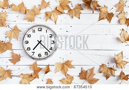 Clock And Leaves On A White Plank