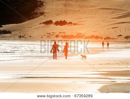 Silhouetted couple walking a dog on the beach