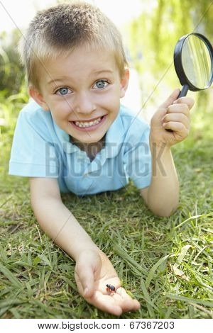 Young boy with beetle and magnifying glass