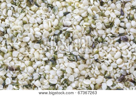 Processed hemp seeds commonly known as hemp hearts.