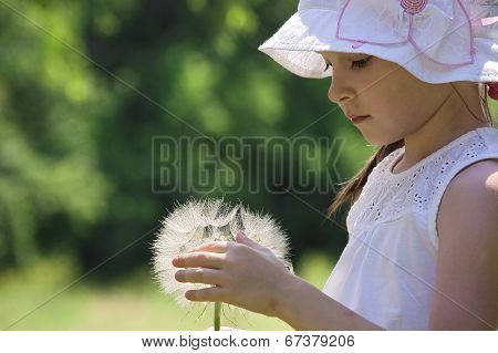 girl playing with huge blowball of goats-beard