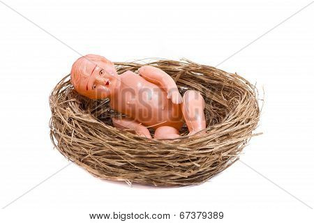 Baby Doll Inside A Nest