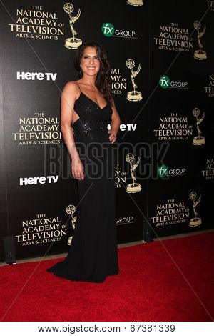 LOS ANGELES - JUN 22:  Kelly Monaco at the 2014 Daytime Emmy Awards Arrivals at the Beverly Hilton Hotel on June 22, 2014 in Beverly Hills, CA