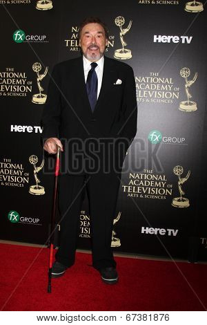 LOS ANGELES - JUN 22:  Joe Mascolo at the 2014 Daytime Emmy Awards Arrivals at the Beverly Hilton Hotel on June 22, 2014 in Beverly Hills, CA