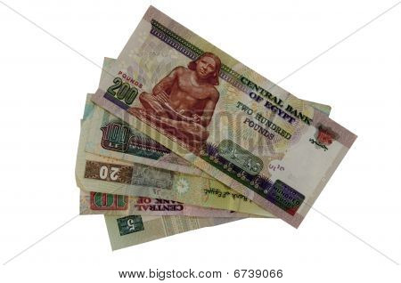 Egptian Pounds