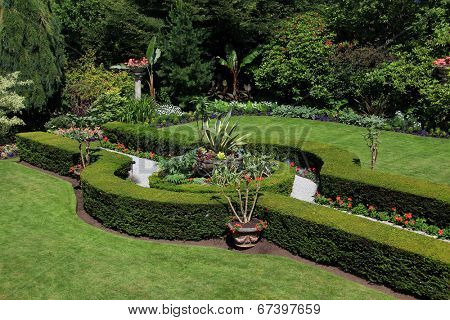 Formal garden with path and cedar hedges.