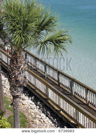 Florida Oceanside Boardwalk