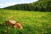 picture of tall grass  - Picnic basket in the tall grass - JPG