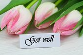 image of wishing-well  - Get well card with pink tulips - JPG