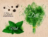 stock photo of mint-green  - Spices herbs set drawn watercolor blots and stains with a spray black pepper - JPG
