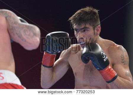 NOVOSIBIRSK, RUSSIA - NOVEMBER 29, 2014: Carlos Aquino of Argentina in the match against Evaldas Petrauskas of Lietuva during AIBA Pro Boxing tournament. The winners will go to the Olympics-2016