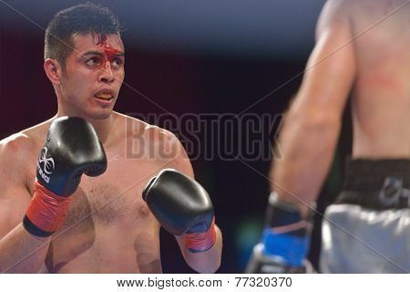 NOVOSIBIRSK, RUSSIA - NOVEMBER 29, 2014: Match Romero Marin (left) of Mexico vs Abdelkader Chadi of Algeria during AIBA Pro Boxing tournament. The winners will go to the Olympics-2016