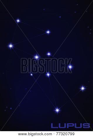 illustration of Lupus constellation
