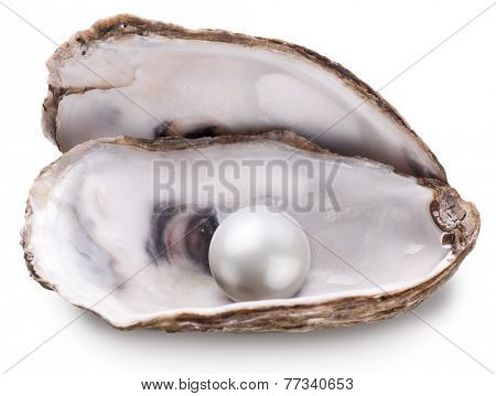 Open oyster with pearl isolated on white background.