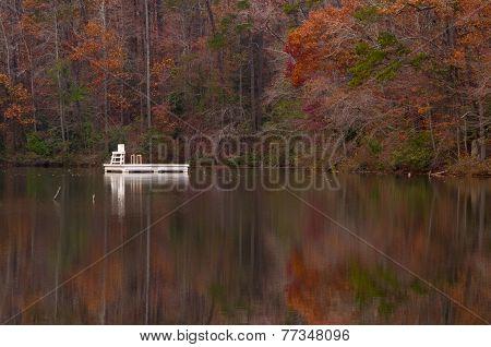 Autumn Swimming
