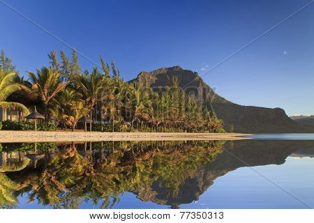Tropical Beach With Palm Trees And Mountain. Mauritius.